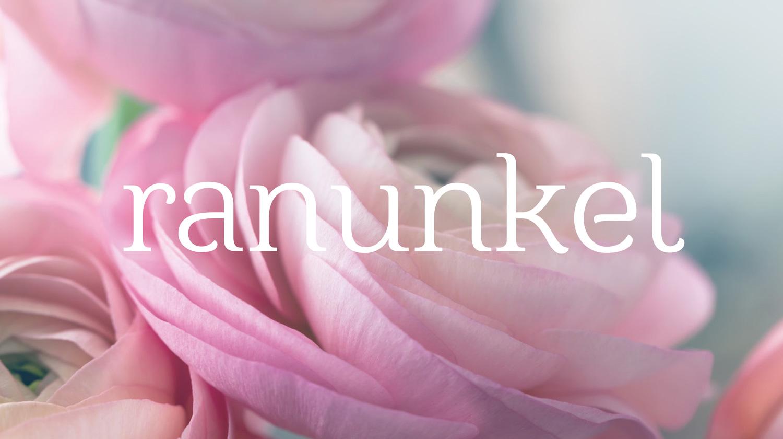 Ranunkel_Start_1500px-841px-01